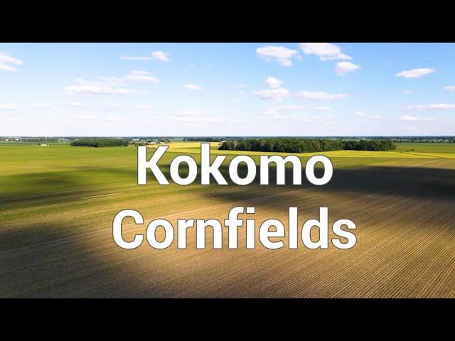Kokomo Cornfields