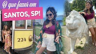Turismo em Santos SP O que fazer pontos tursticos gastronomia e muito mais  Pronta Para o Sim