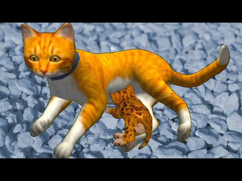 РОЖДЕНИЕ КОТЕНКА #5 Симулятор КОТА и КОШКИ с Кидом. Баги. Охота на Босса мышь, паука на пурумчата