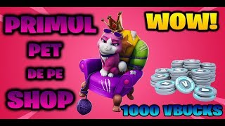 Lvl 73 | PET PE SHOP! WOW! | ROAD TO 10K - FORTNITE ROMANIA