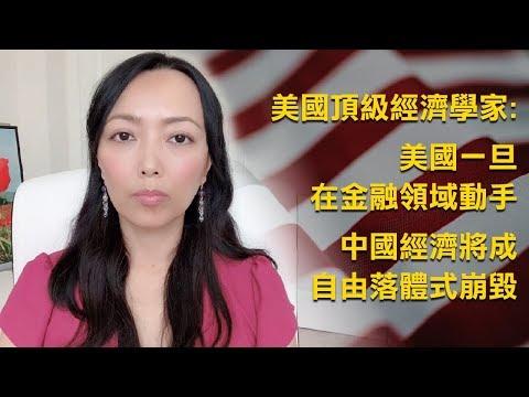 美国顶级经济学家表示, 美国一旦在金融领域动手,中国经济将成自由落体式崩毁