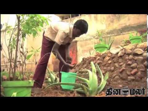 Herbal Garden Created by School Students at Madurai  - Dinamalar Nov 13th 2013 News