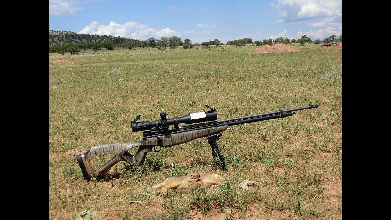 1st Airgun Prairie Dog Hunt In Arizona Doovi
