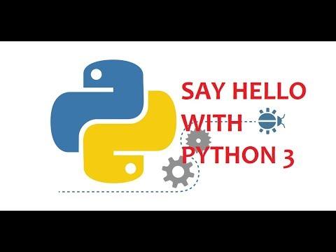 Say 'Hello' With Python