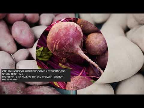 Как вкусно приготовить овощи