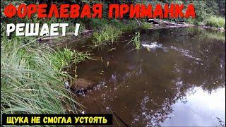 ЩУКА не устояла перед ФОРЕЛЕВОЙ приманкой Рыбалка на ультралайт Ловля на микроречке