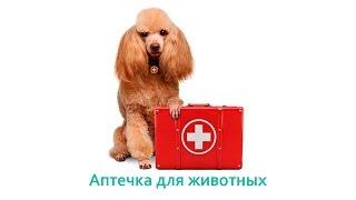 Аптечка для животных. Ветеринарная клиника БИО-ВЕТ.(, 2016-10-17T22:48:31.000Z)