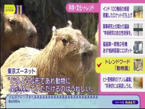ついに NHKで取り上げられるwww