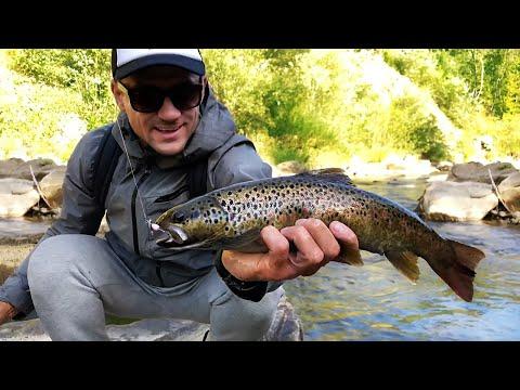 Рыбалка на Форель.  Ловля дикой форели на быстрой реке.  Рыбалка в Карпатах.  2 серия