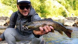 Рыбалка на Форель Ловля дикои форели на быстрои реке Рыбалка в Карпатах 2 серия