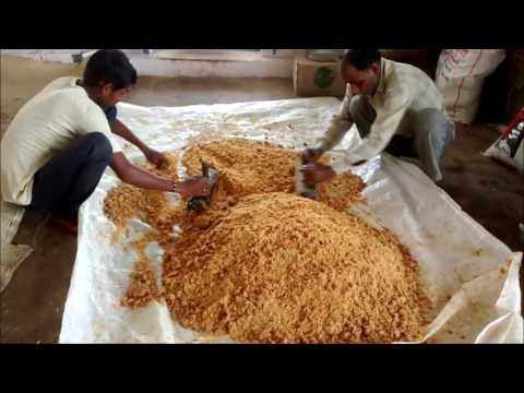 Organic jaggery powder manufacturing process (panela sugar) (Muscovado sugar)