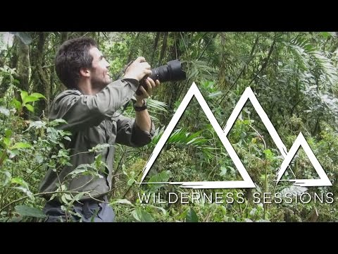 Flying Over The Cloud Forest of Mexico | Wilderness Sessions | Earth Unplugged