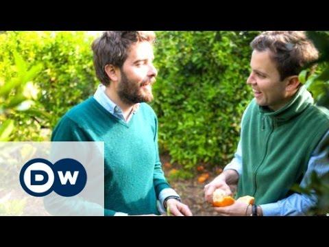Spanish orange farmers turn to 'crowdfarming' | DW Documentary