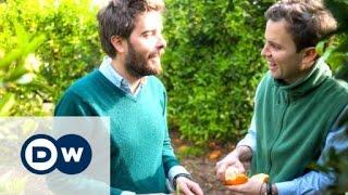 Spanish orange farmers turn to 'crowdfarming'   DW Documentary