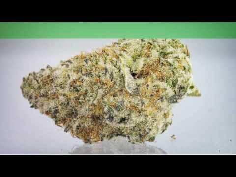 Meds Cafe Lowell :  Recreational Marijuana West Michigan