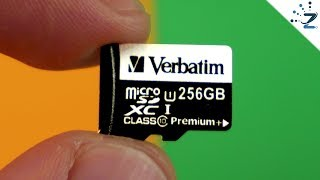 I bought a 256GB MicroSD for $9USD... from WISH