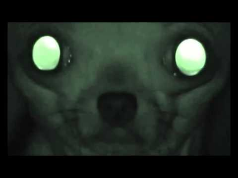 Rubber Johnny by Chris Cunningham   Aphex Twin 1080p HD