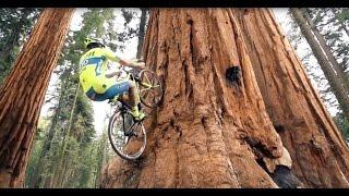Опасные Трюки на велосипеде от профи!