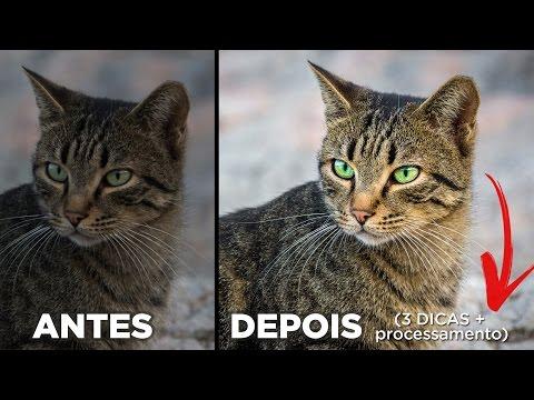 3 Dicas Poderosas Para Deixar Fotos De Retrato 5x Melhores