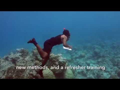 Vanuatu RESCCUE - Marine Toolkit