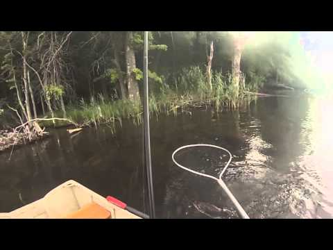 Bass Fishing The Kensico Reservoir