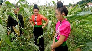 phim tiếng Thái ll sống chụ sòn sào ll tập 120 (Tiến dặn người yêu) phim cổ tích dân tộc Thái