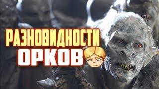 Разновидности Орков