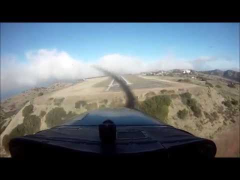Fly trip in California