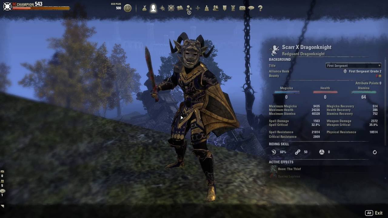 Eso Best Tank Build