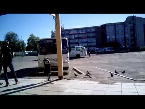 петрозаводск жду автобуса на медвежьегорк!