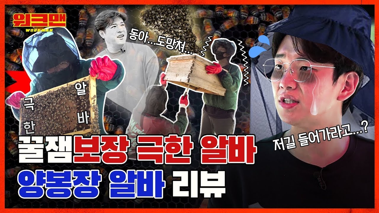 [ENG] 🐝꿀잼주의🐝 진짜 벌떼에 SM 춤짱 신동도 얼어버린 🍯 빨려다 골로 가는 극한 직업! 양봉장 알바 리뷰 | 워크맨 ep.71