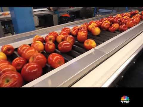 Stemilt: apple story part-2