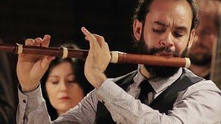 C.P.E. Bach: Flute Concerto in A minor, Wq.166, H.431 – Bremer Barockorchester