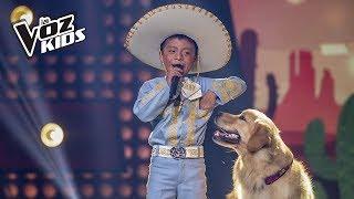David Tarapues canta Corriente y Canelo - Rescates | La Voz Kids Colombia 2018