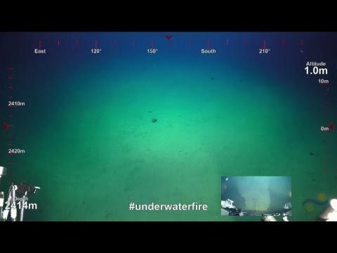 ROV SuBastian Dive 092- Dacite Flow - Underwater Fire