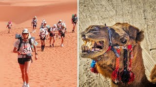 Five Thirst Quenching Facts About The Sahara Desert | Most Amazing Science Facts By LAB 360