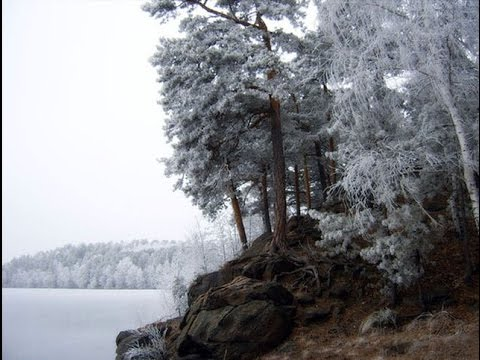 г. Снежинск