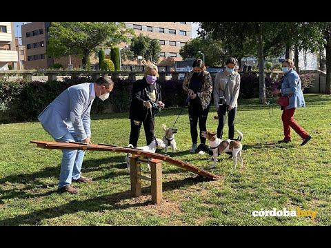 Los perros de pequeños a supergrandes cuentan desde hoy con dos zonas de esparcimiento canino