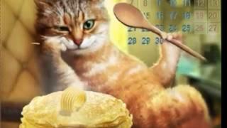 Коты поздравляют с масленицей!!!!!!