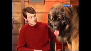 Диалоги о животных леонбергер Гросс