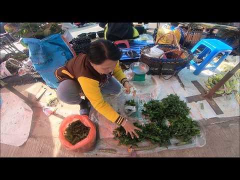 Wild food in asian street food - thai laos market