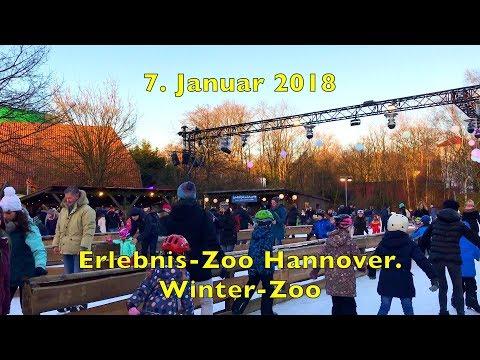 7. Januar 2018.  Erlebnis-Zoo Hannover. Winter-Zoo.