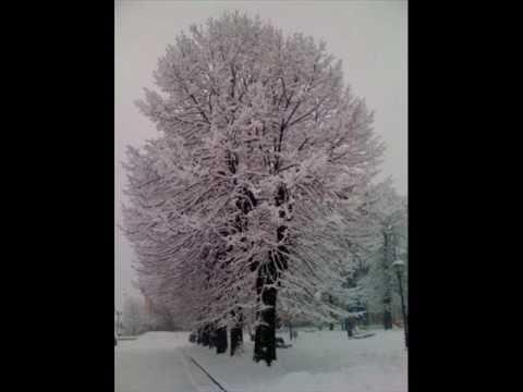 L'albero ed io Francesco Guccini