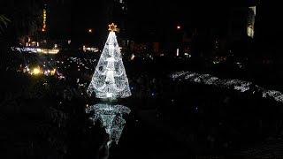 水中耶誕樹-點亮台中柳川風華- 《台中柳川藍帶水岸》光景藝術展