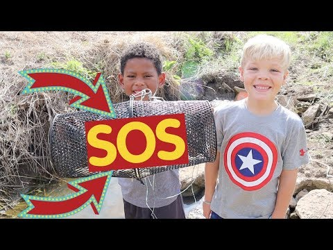 Rescuing Tons of Fish From Dried Up Creek!! (Rescue Mission)