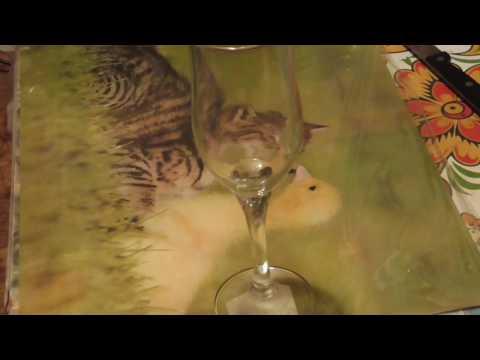 Кисломолочный напиток тан