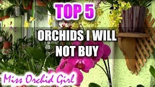 Top 5 - Orchids I won