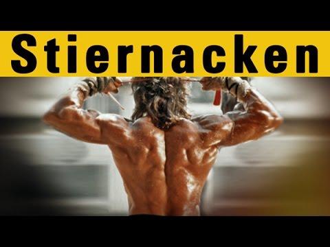 Stiernacken Muskel