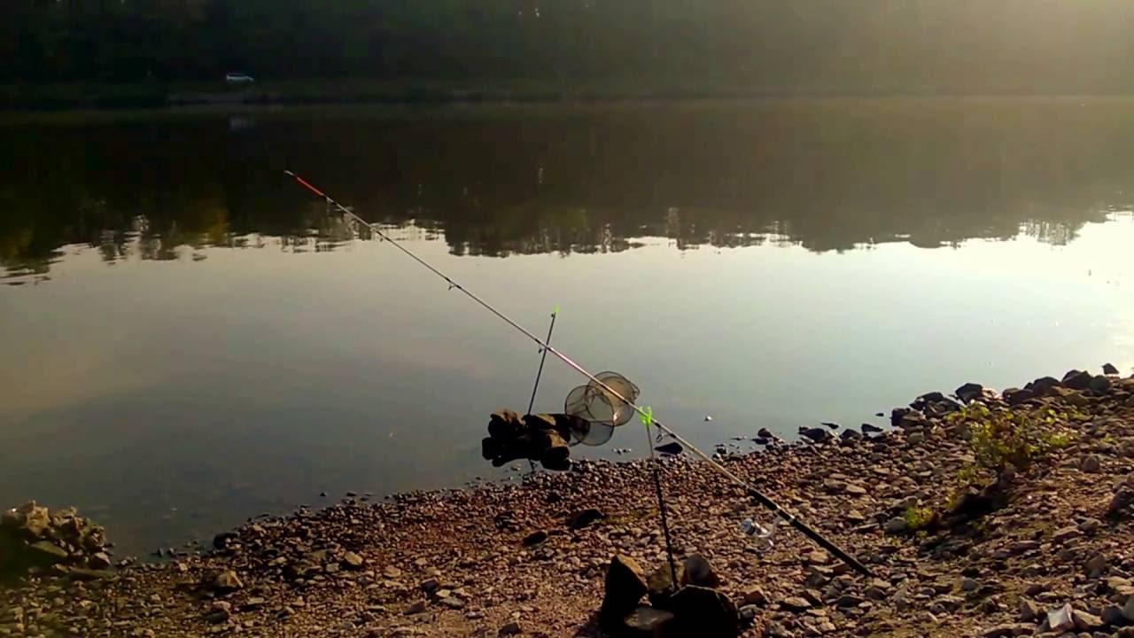 Донная рыбалка картинки