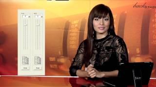 La Ganancia en el Audio - Sensey TV te lo explica